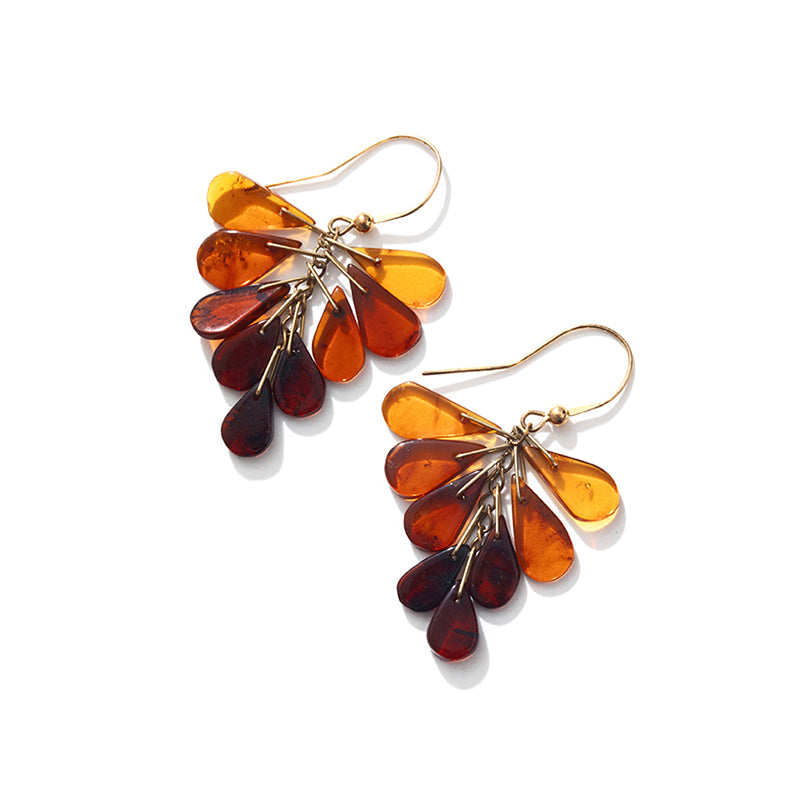 Beautiful Mixed Colors of Baltic Amber Gold filled Earrings