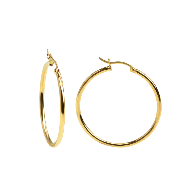 Charismatic Gold Plated Hoop Earrings