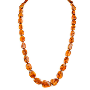 Sparkling Honey Cognac Baltic Amber Beaded Necklaces