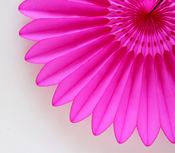 Hot Pink Honeycomb Flower Fan