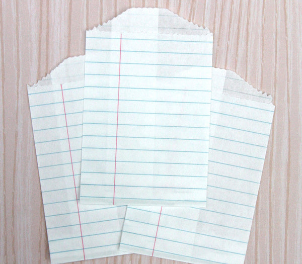 Notebook Paper Bags - Small