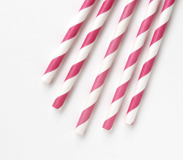 Raspberry Pink Striped Straws