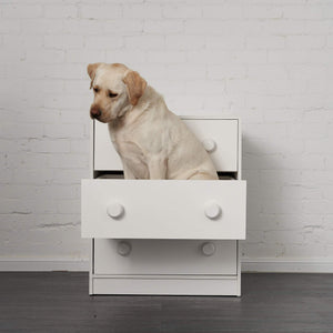 Large 3 drawer under bunk chest with a large 30+ kg's Labrador casually sitting in a drawer.