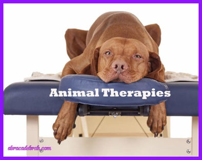 Animal Therapies Live