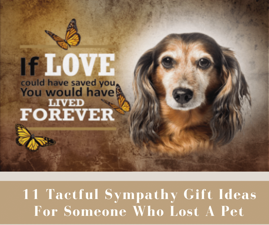 11 Tactful Sympathy Gift Ideas For Someone Who Lost A Pet