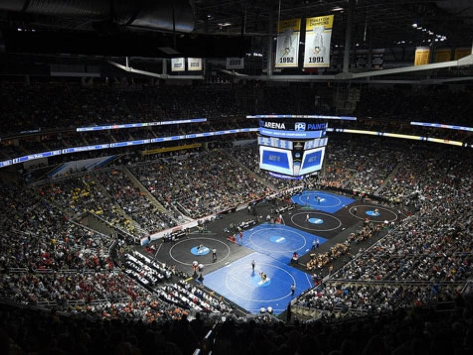 NCAA Adding Women's Wrestling To Emerging Sports Program