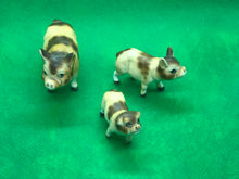 Load image into Gallery viewer, Japan, Pigs-Set of 3