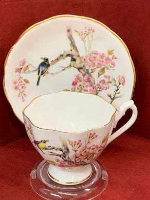 Queen Anne,  England. Cup and Saucer. Cherry Blossoms and Bird