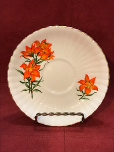 Royal Windsor, England, Cup and Saucer. Prarie Lily