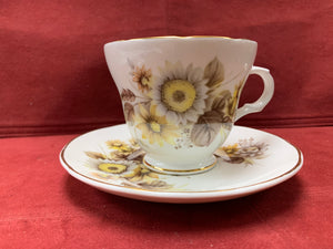 Crown Trent, Staffordshire, England.  Cup and Saucer.  Daisies