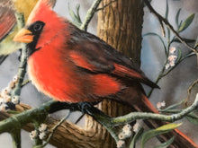 Load image into Gallery viewer, The Cardinal, by Kevin Daniels- Collector Plate