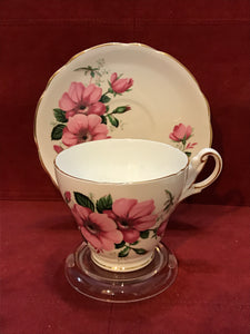 Regency,  England.  Cup and Saucer. Wild Roses