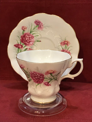 Royal Albert, England. Cup and Saucer. Friendship Carnation