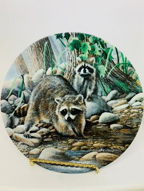 Collector Plate- by Kevin Daniels- The Raccoon. 1987. 8-1/2