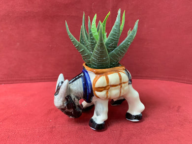 Occupied Japan, Mini Planter, Donkey