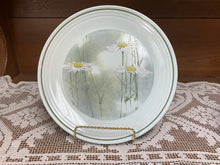 "Load image into Gallery viewer, Dinner Plates- 10-1/4"" in diameter"