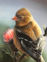 Load image into Gallery viewer, The Goldfinch, by Kevin Daniels