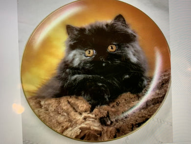 Collector Plate. Cats --