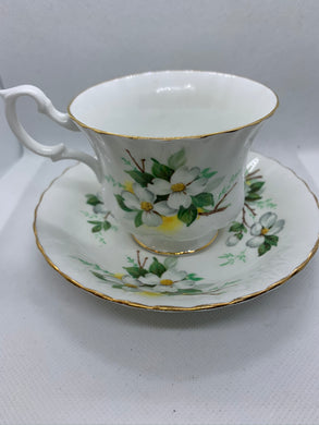 Royal Albert, England. Cup and Saucer. Apple  Blossoms