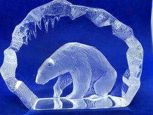 Sweden, Mats Jonasson,   Polar Bear