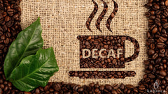 All about the decaffeination process