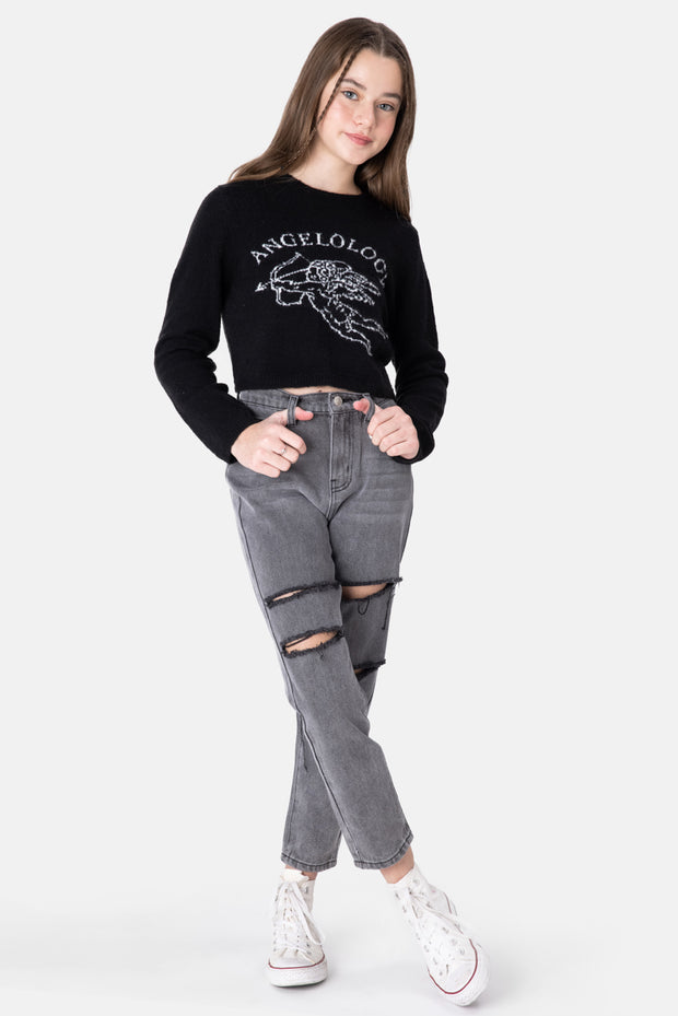 ANGELOLOGY Cropped Knit Sweater