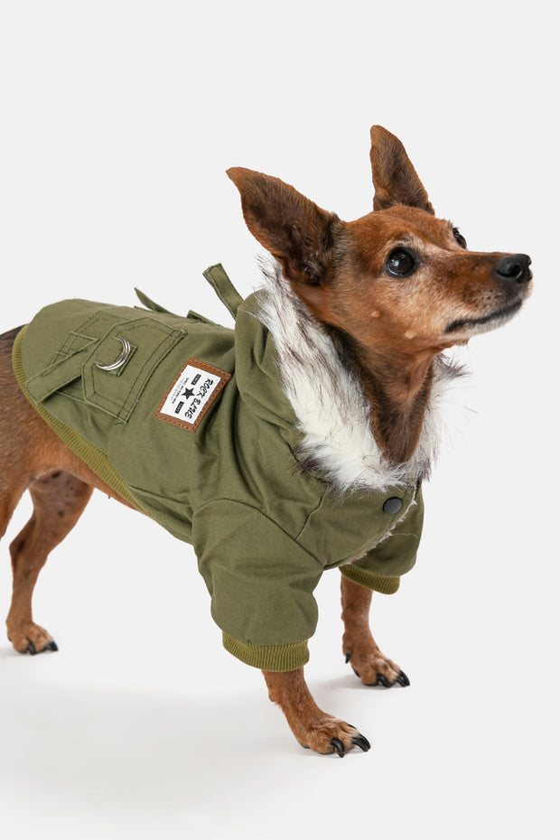 Good-Boy Hooded Coat