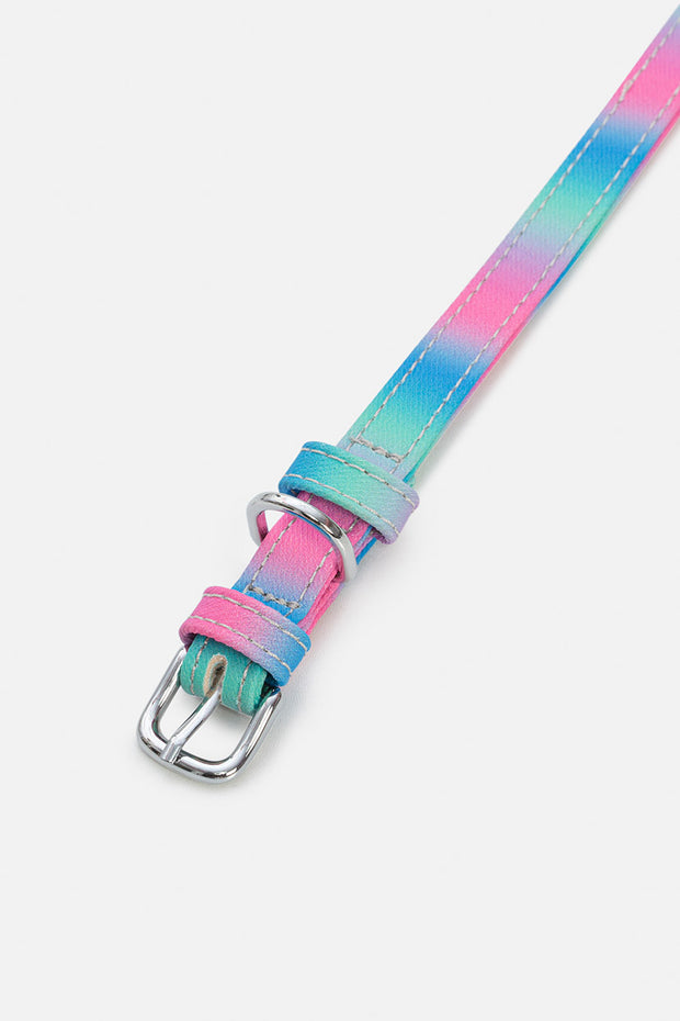 Styler Dog Collar