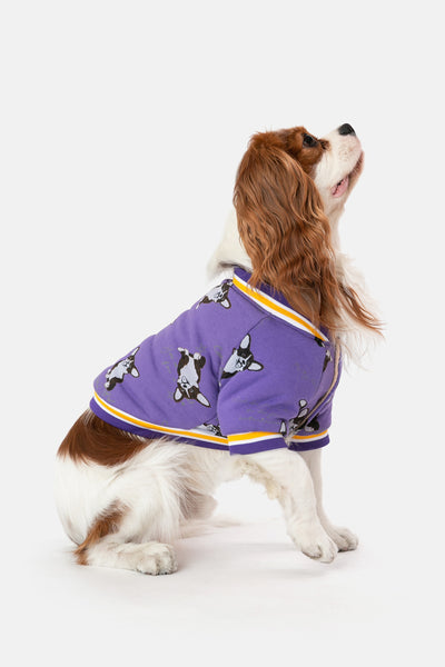 Sweet-Dog Baseball Jacket