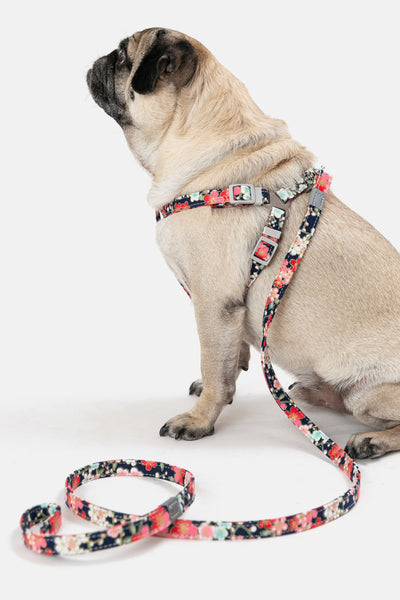 Floral Harness