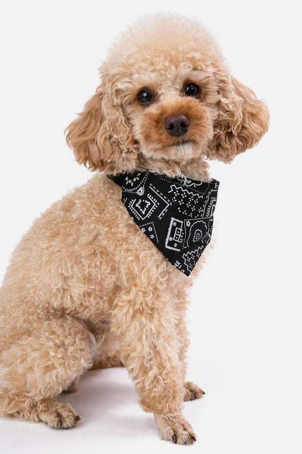 Paisley Bandana Dog Collar