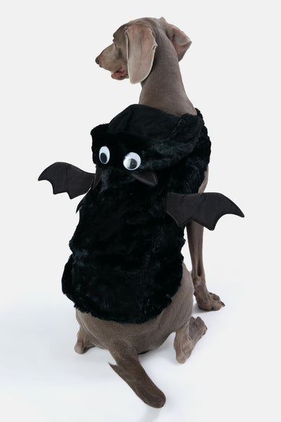Bat-Dog Outfit