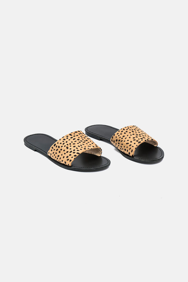 Pacific Leopard Slides