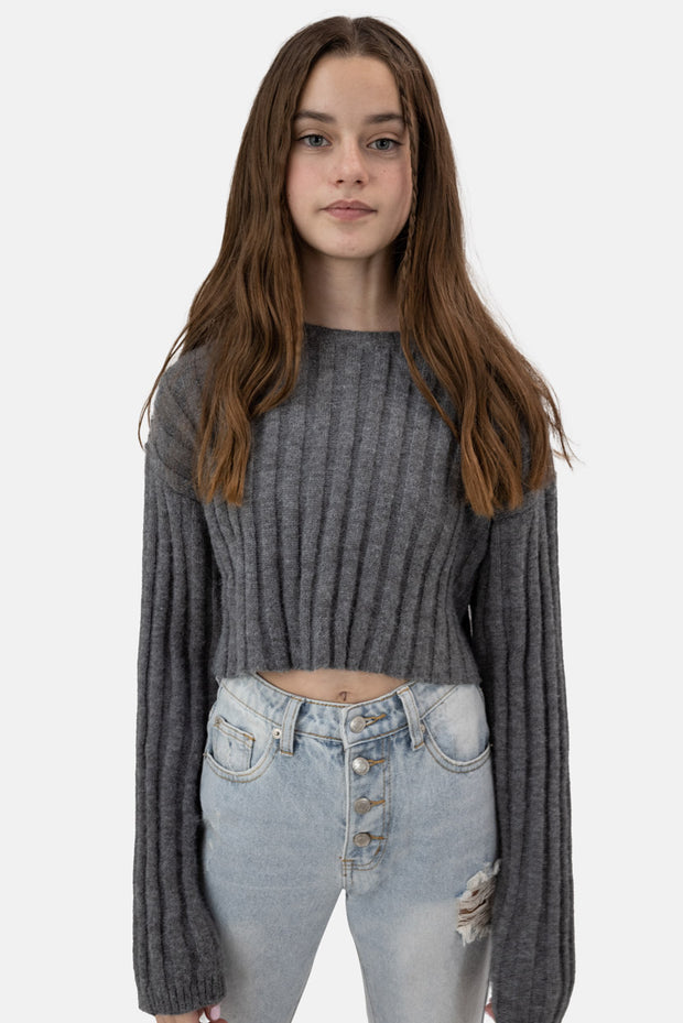 Iron Cropped Sweater