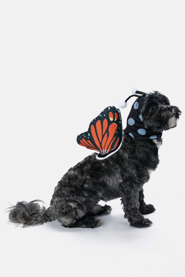 Dog-erfly Outfit