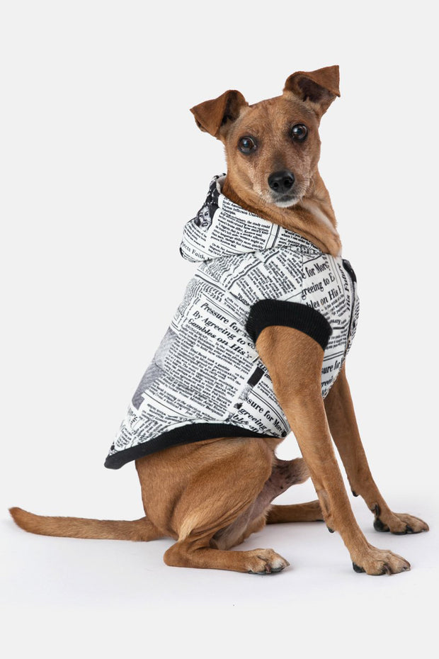 Newsy Dog Hooded Vest
