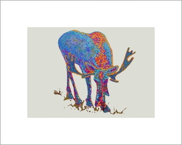 Bull Moose-1 ~ Ready to frame - Dranchak Studio