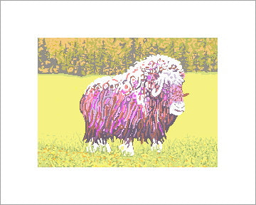 Cow Muskox ~ Ready to frame
