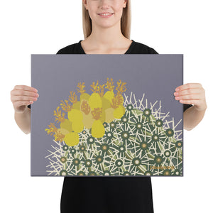 Ferocactus - Gallery wrapped canvas prints