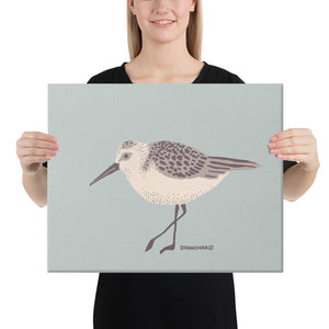 Sandpiper - Gallery wrapped canvas print