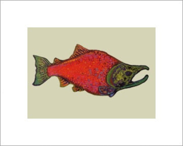Sockeye ~ Ready to frame