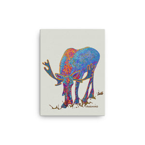 Bull moose 1 - Gallery wrapped canvas print