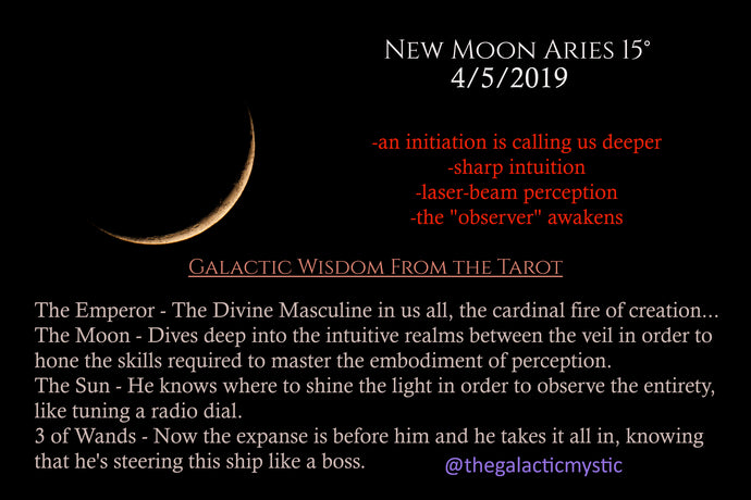 April's Cardinal Fire New Moon