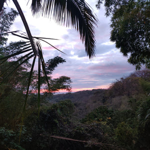 Sending love and joy from pachamama, Costa Rica
