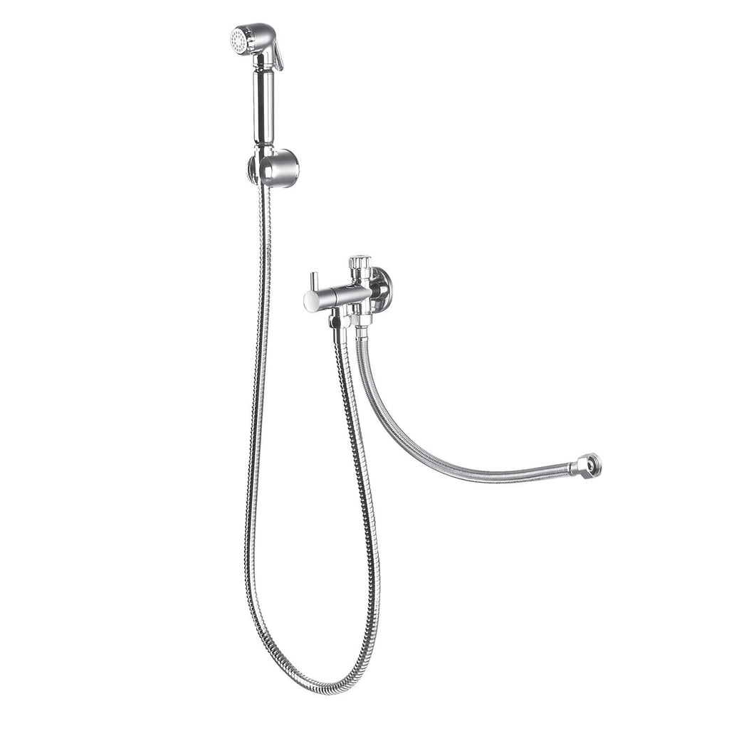 DAX Hand Shower Set, Wall Mount with Hose and Valve, Brass Body, Chrome Finish (DAX-9317C)