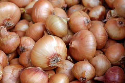 A pile of onions, for Untangled