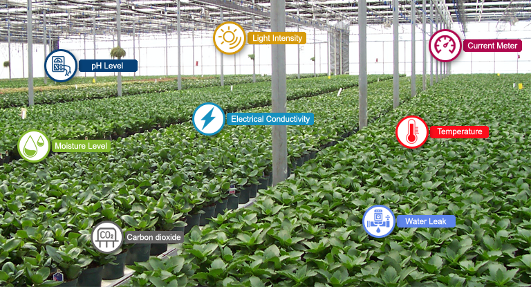 E-Farming and Greenhouse Farm Monitoring