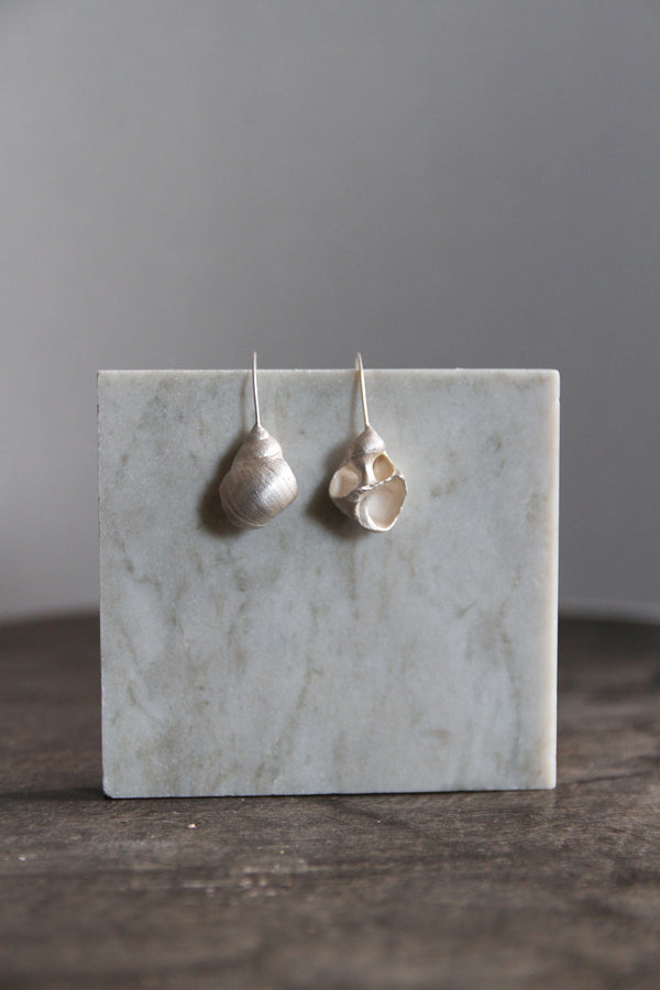 White silver seashell earrings
