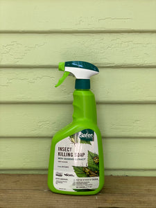 Insect Killing Soap - Mickey Hargitay Plants