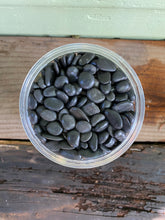 Load image into Gallery viewer, Black Gravel Polished - Mickey Hargitay Plants